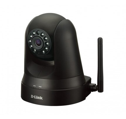 D-Link Pan & Tilt Day/Night Network Camera