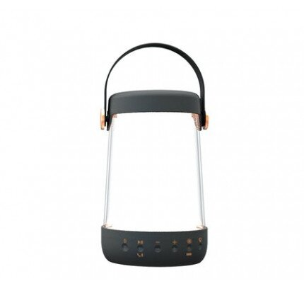 iHome iBT10 Dual Purpose Rechargeable Speaker