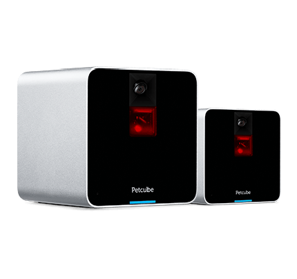 Petcube Camera 2-Pack