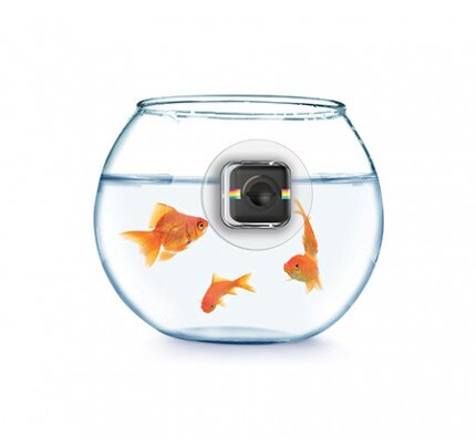 Polaroid Eye Mount for Polaroid Cube/Cube+